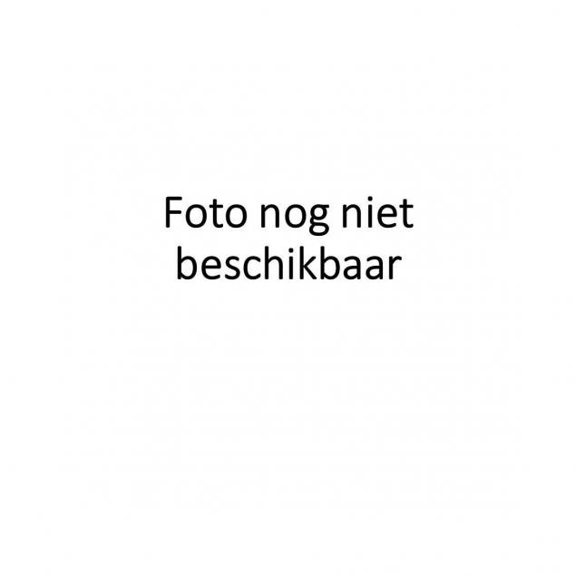 干炒鼓汁排骨面Zwarte bonen sparerib met bami droog